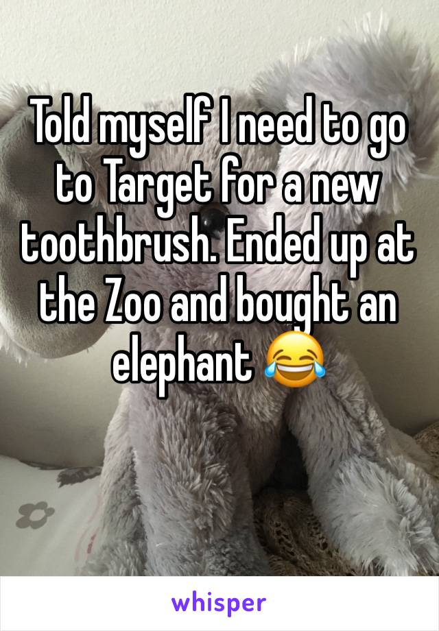 Told myself I need to go to Target for a new toothbrush. Ended up at the Zoo and bought an elephant 😂