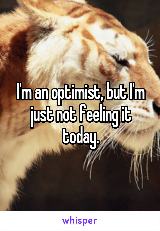 I'm an optimist, but I'm just not feeling it today.