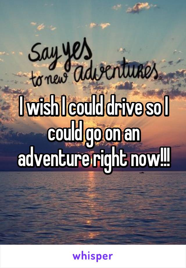 I wish I could drive so I could go on an adventure right now!!!
