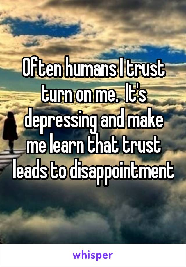 Often humans I trust turn on me.  It's depressing and make me learn that trust leads to disappointment