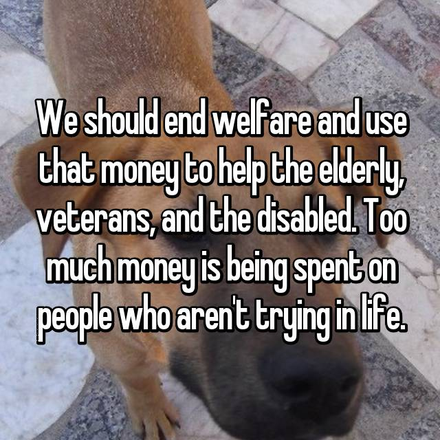 We should end welfare and use that money to help the elderly, veterans, and the disabled. Too much money is being spent on people who aren't trying in life.
