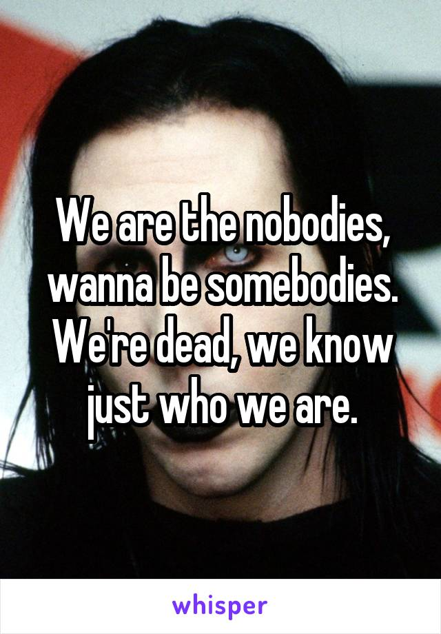 We are the nobodies, wanna be somebodies. We're dead, we know just who we are.