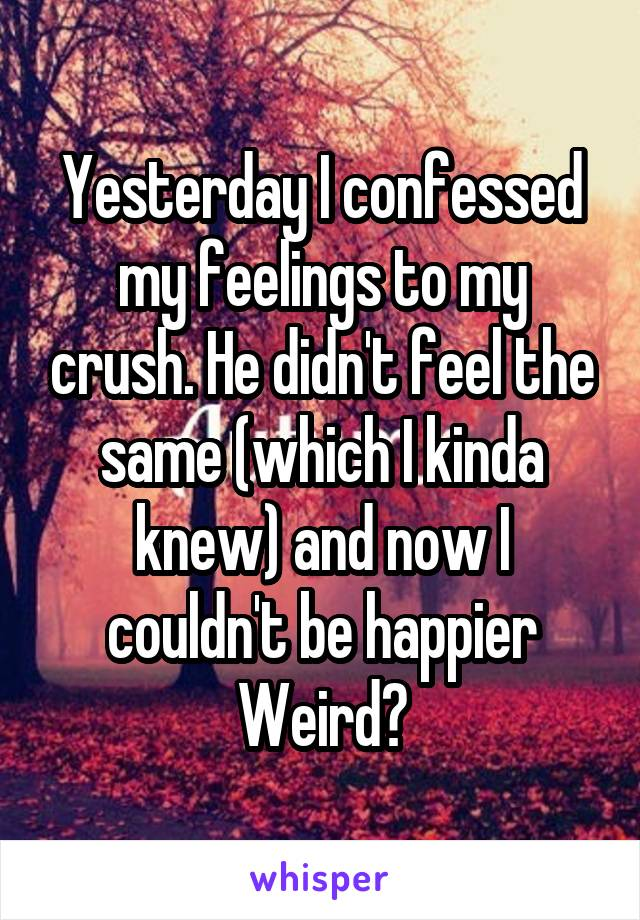 Yesterday I confessed my feelings to my crush. He didn't feel the same (which I kinda knew) and now I couldn't be happier Weird?