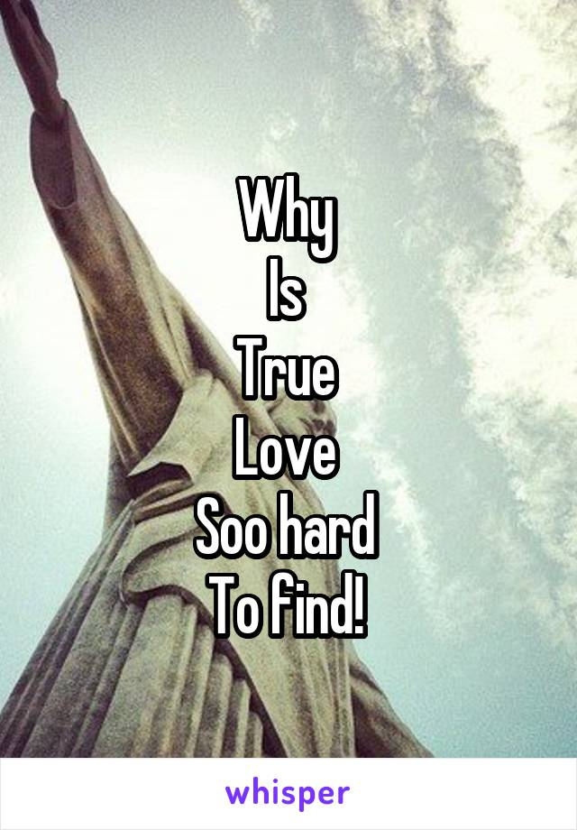 Why  Is  True  Love  Soo hard  To find!