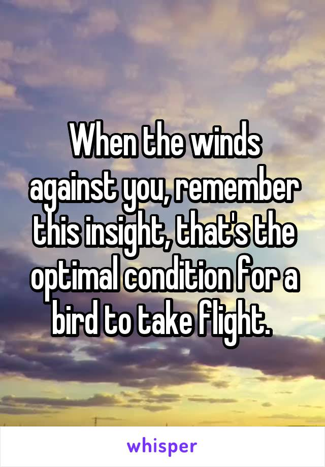When the winds against you, remember this insight, that's the optimal condition for a bird to take flight.