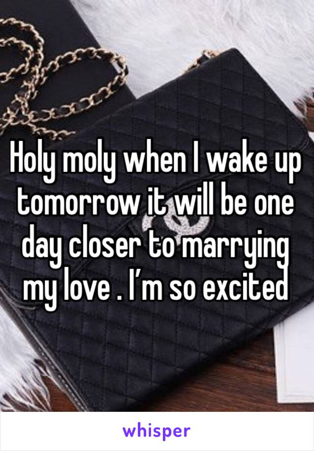 Holy moly when I wake up tomorrow it will be one day closer to marrying my love . I'm so excited