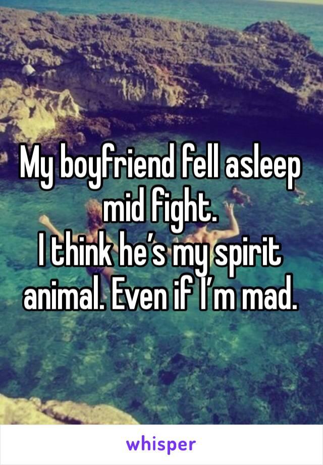 My boyfriend fell asleep mid fight.  I think he's my spirit animal. Even if I'm mad.