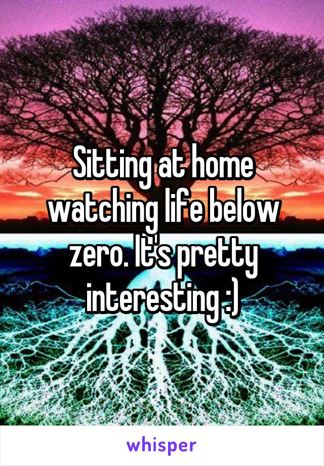 Sitting at home watching life below zero. It's pretty interesting :)