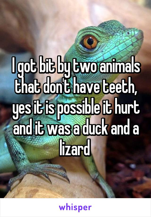 I got bit by two animals that don't have teeth, yes it is possible it hurt and it was a duck and a lizard