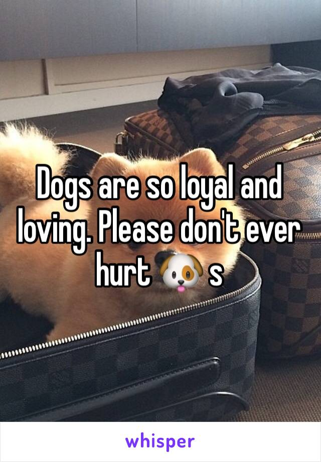 Dogs are so loyal and loving. Please don't ever hurt 🐶 s