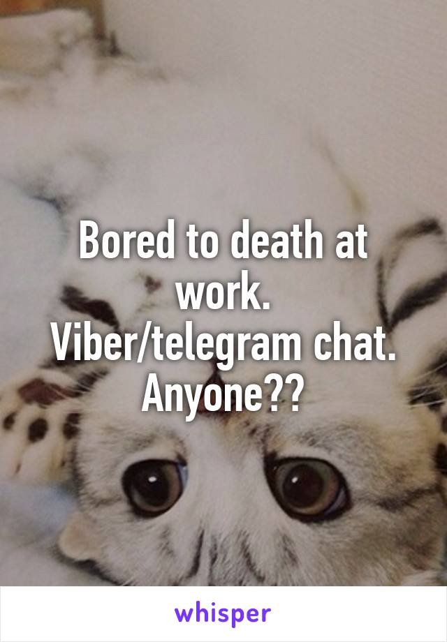 Bored to death at work. Viber/telegram chat. Anyone??