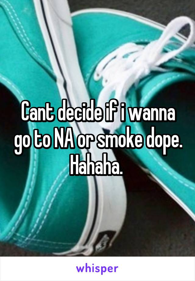 Cant decide if i wanna go to NA or smoke dope. Hahaha.