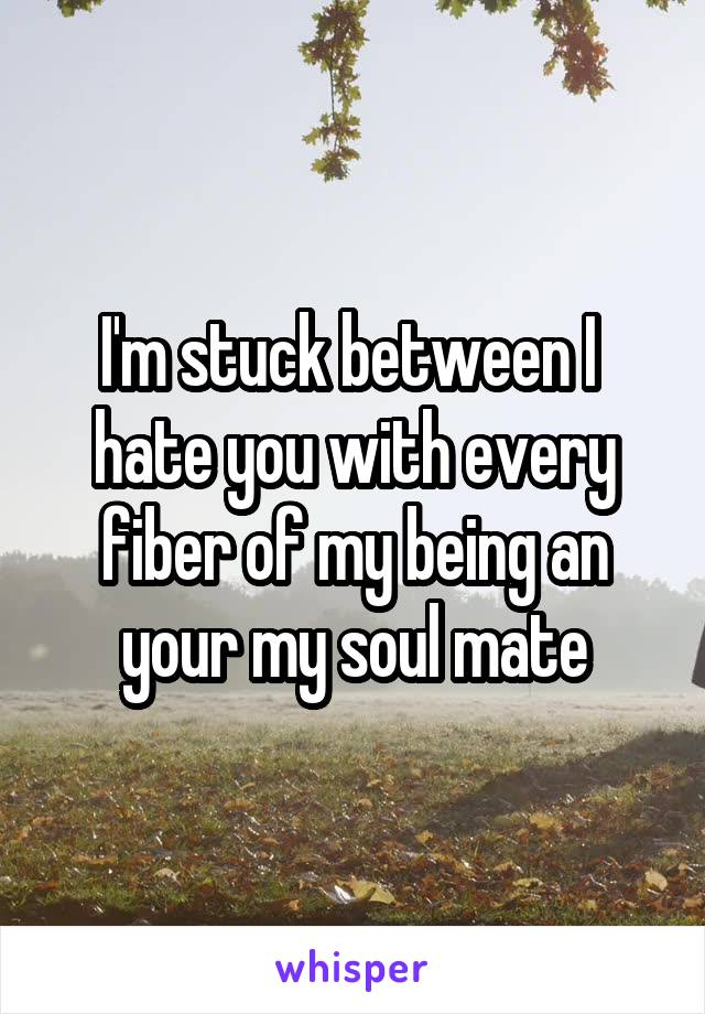 I'm stuck between I  hate you with every fiber of my being an your my soul mate