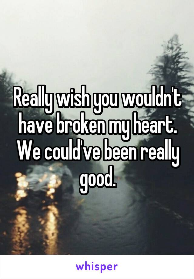 Really wish you wouldn't have broken my heart. We could've been really good.