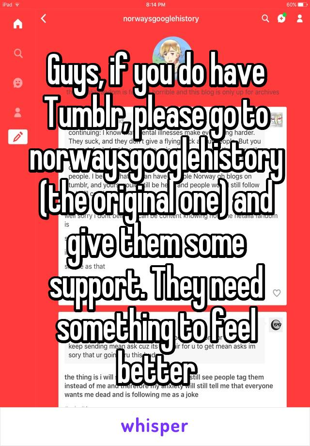 Guys, if you do have Tumblr, please go to norwaysgooglehistory (the original one) and give them some support. They need something to feel better