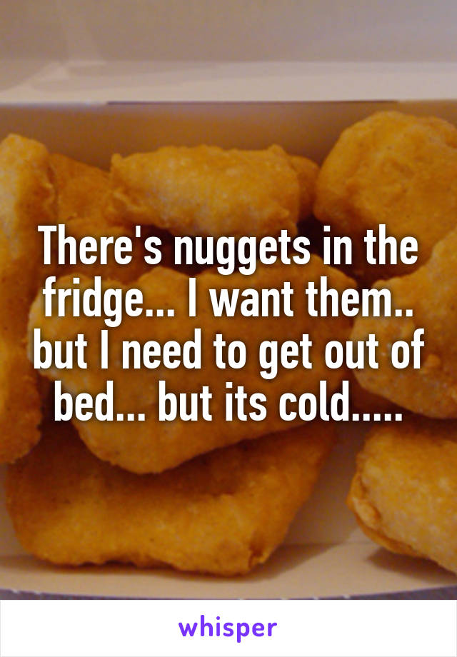 There's nuggets in the fridge... I want them.. but I need to get out of bed... but its cold.....