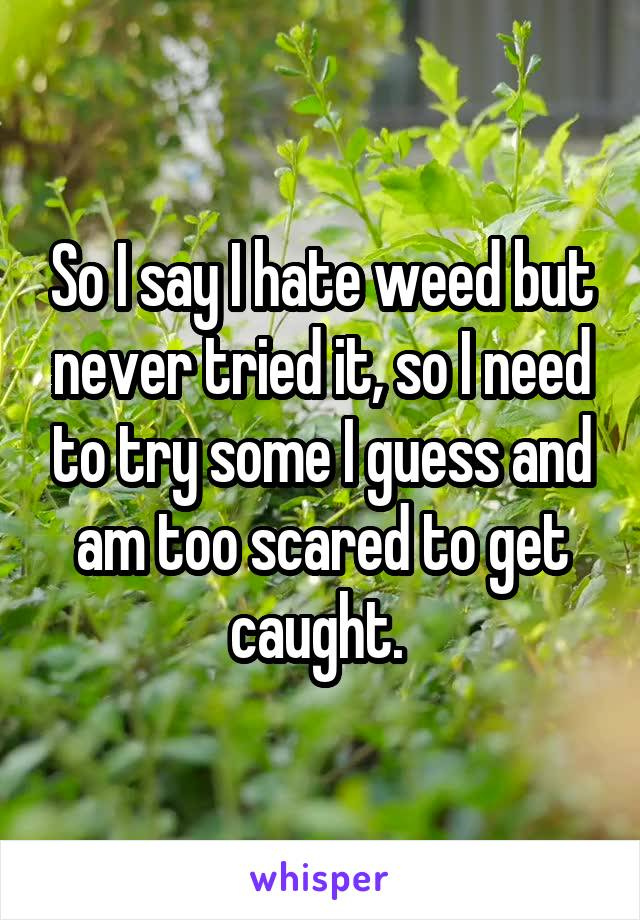So I say I hate weed but never tried it, so I need to try some I guess and am too scared to get caught.