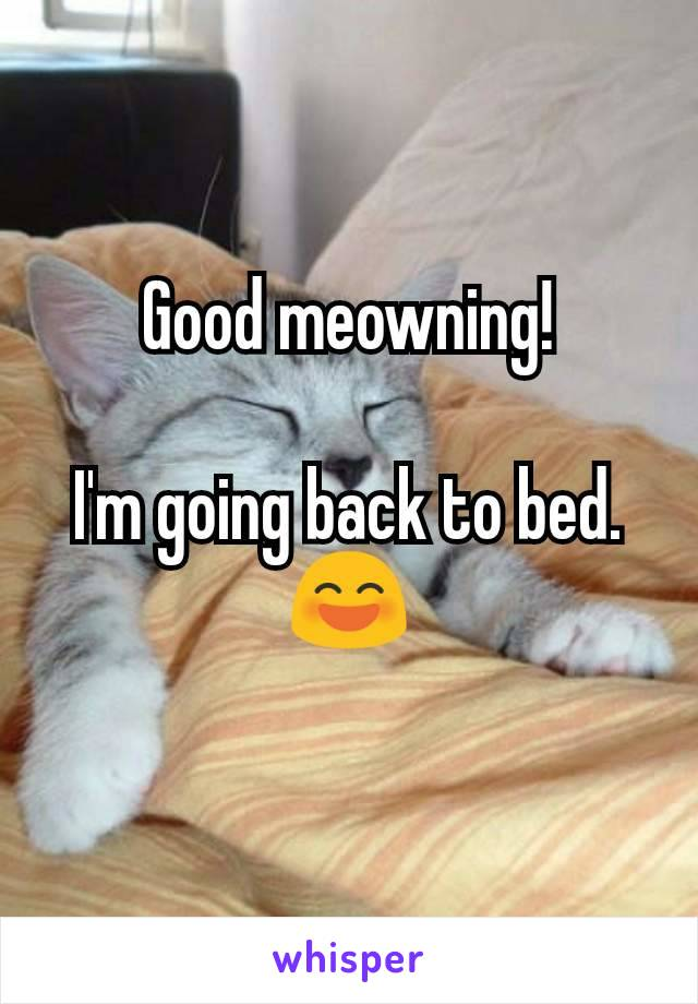 Good meowning!  I'm going back to bed. 😄