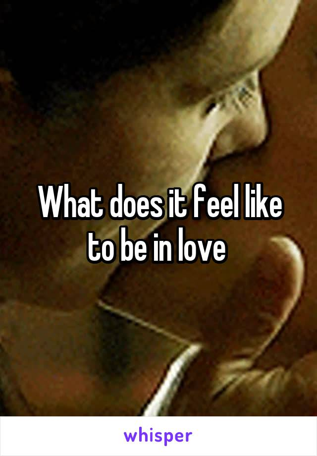 What does it feel like to be in love