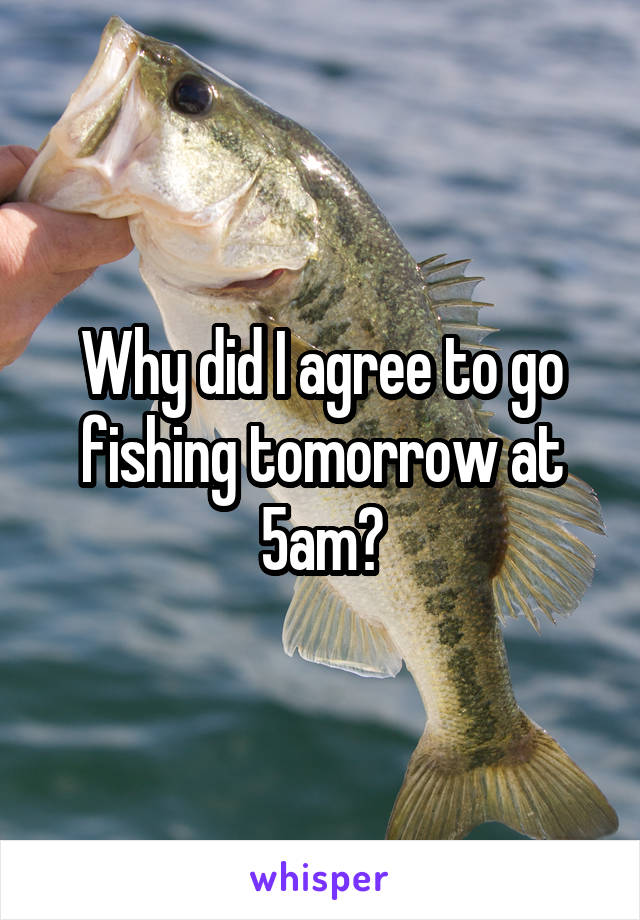 Why did I agree to go fishing tomorrow at 5am?