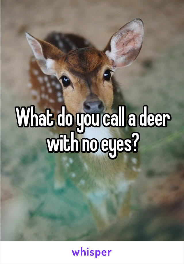 What do you call a deer with no eyes?