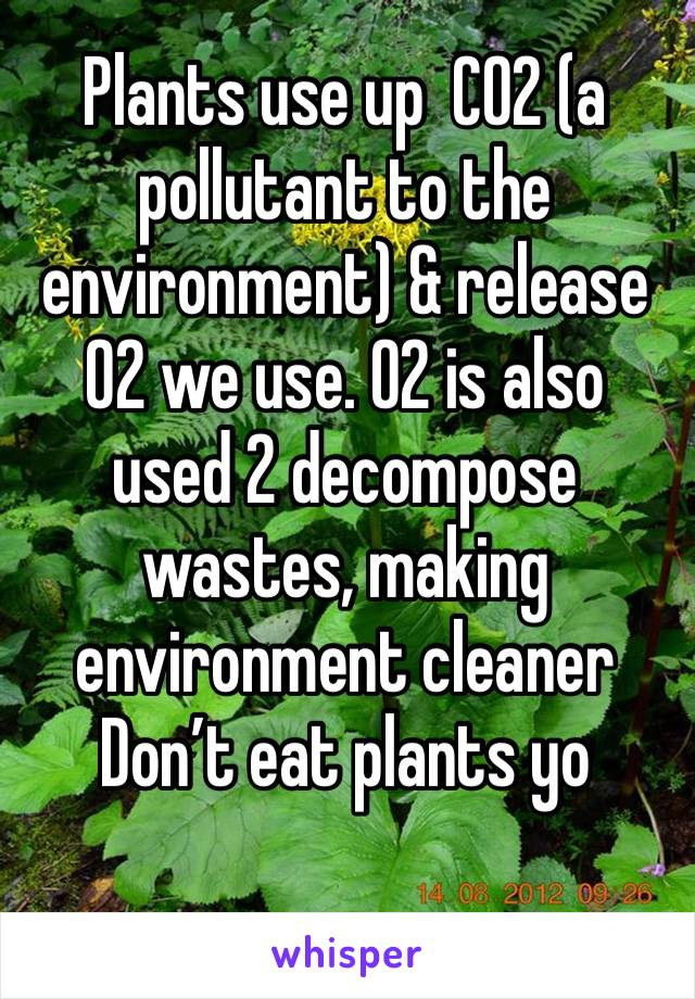 Plants use up  CO2 (a pollutant to the environment) & release O2 we use. O2 is also used 2 decompose wastes, making environment cleaner Don't eat plants yo