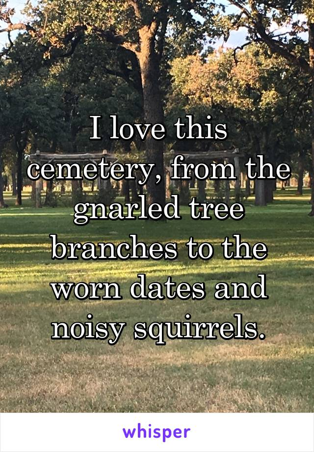 I love this cemetery, from the gnarled tree branches to the worn dates and noisy squirrels.