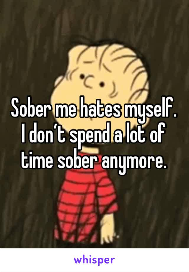 Sober me hates myself.    I don't spend a lot of time sober anymore.