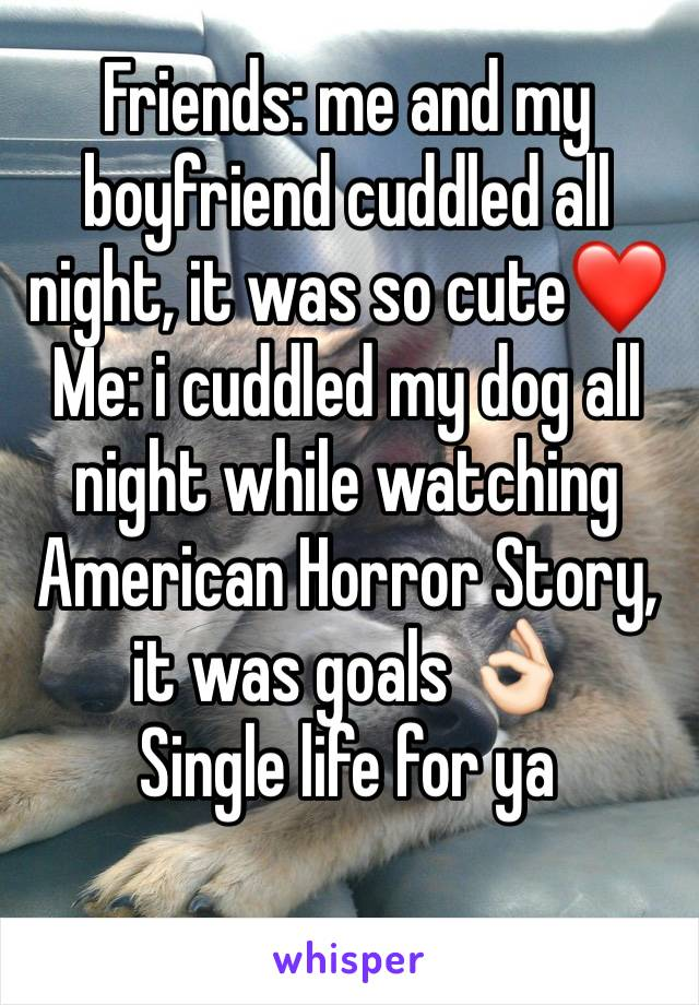 Friends: me and my boyfriend cuddled all night, it was so cute❤️ Me: i cuddled my dog all night while watching American Horror Story, it was goals 👌🏻 Single life for ya