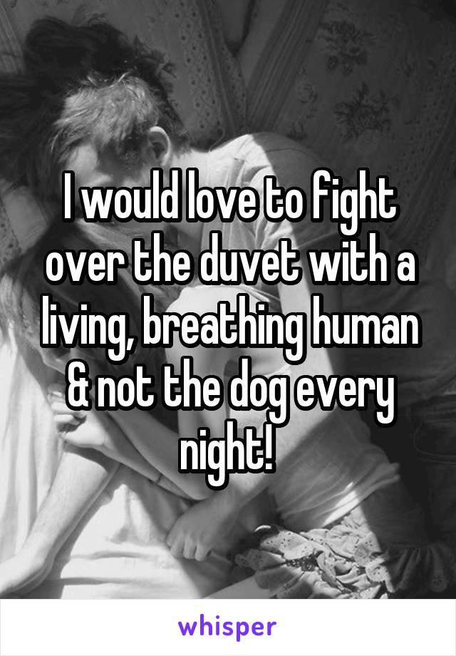 I would love to fight over the duvet with a living, breathing human & not the dog every night!