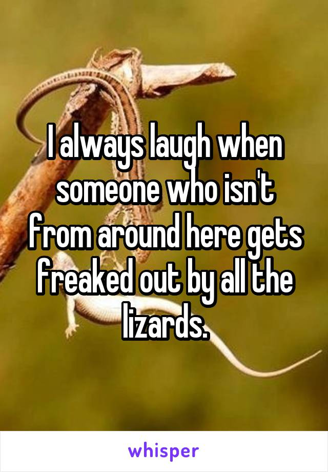I always laugh when someone who isn't from around here gets freaked out by all the lizards.