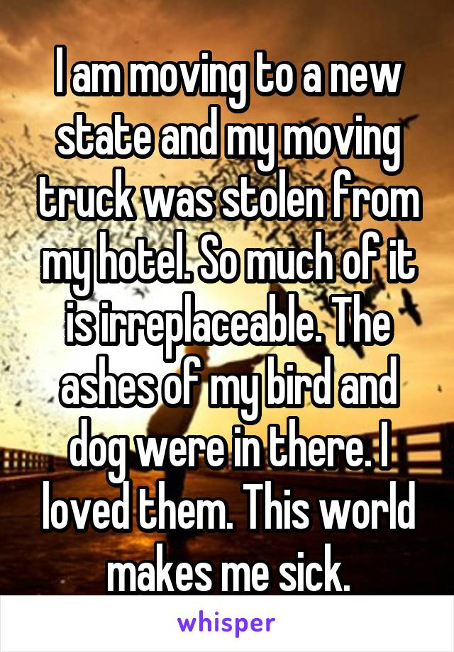 I am moving to a new state and my moving truck was stolen from my hotel. So much of it is irreplaceable. The ashes of my bird and dog were in there. I loved them. This world makes me sick.