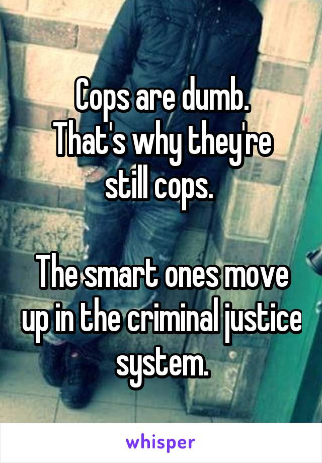 Cops are dumb. That's why they're still cops.   The smart ones move up in the criminal justice system.