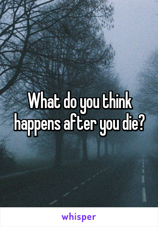 What do you think happens after you die?