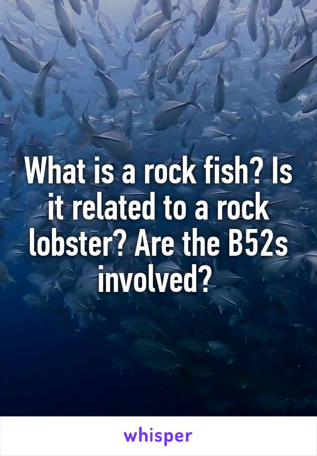 What is a rock fish? Is it related to a rock lobster? Are the B52s involved?