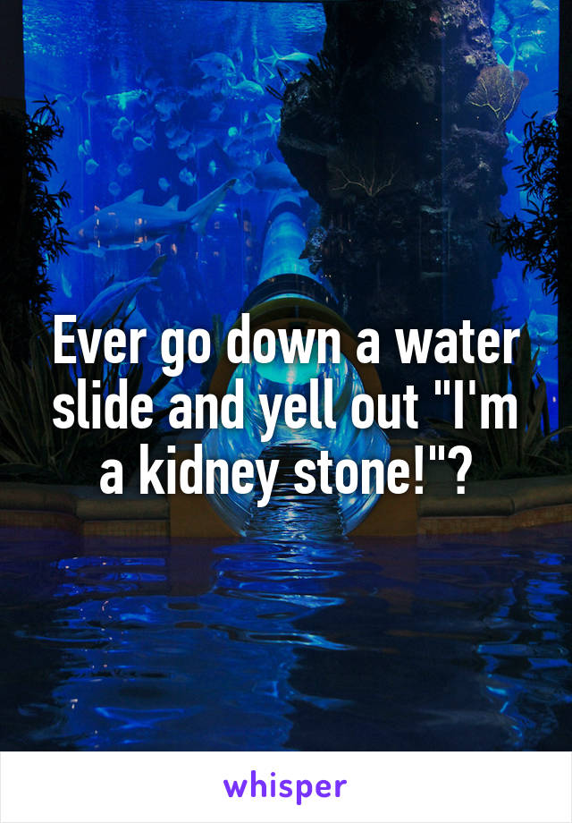 "Ever go down a water slide and yell out ""I'm a kidney stone!""?"