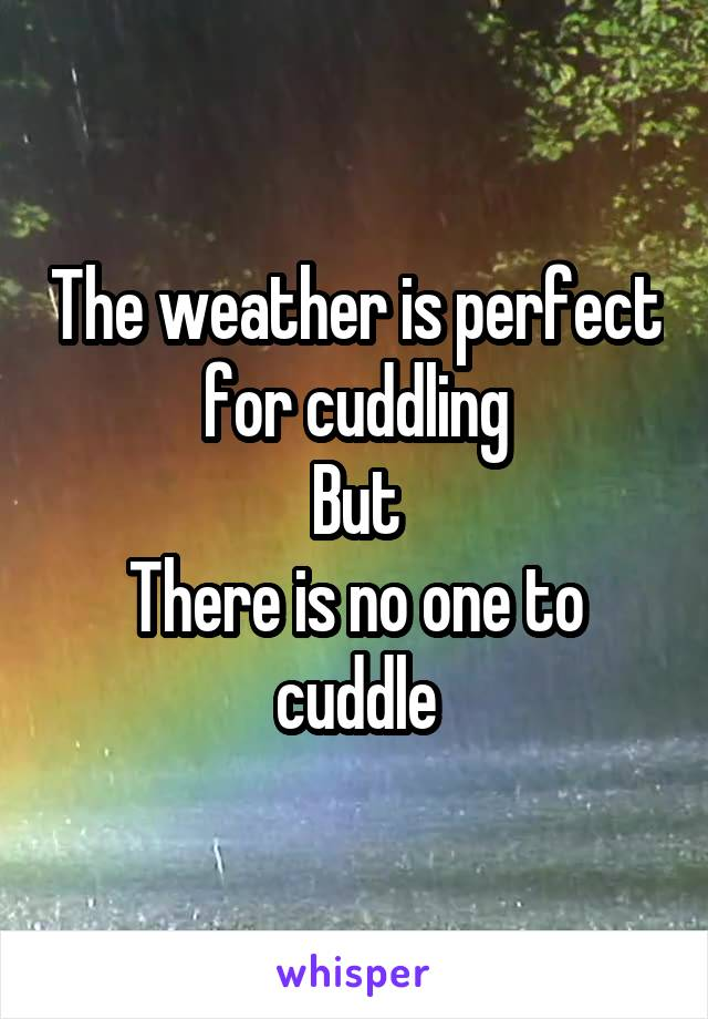 The weather is perfect for cuddling But There is no one to cuddle