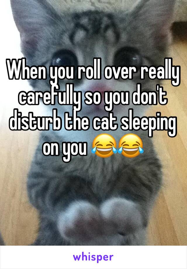 When you roll over really carefully so you don't disturb the cat sleeping on you 😂😂