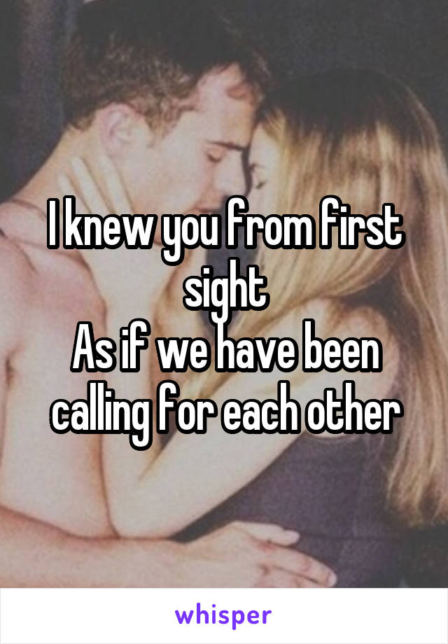I knew you from first sight As if we have been calling for each other
