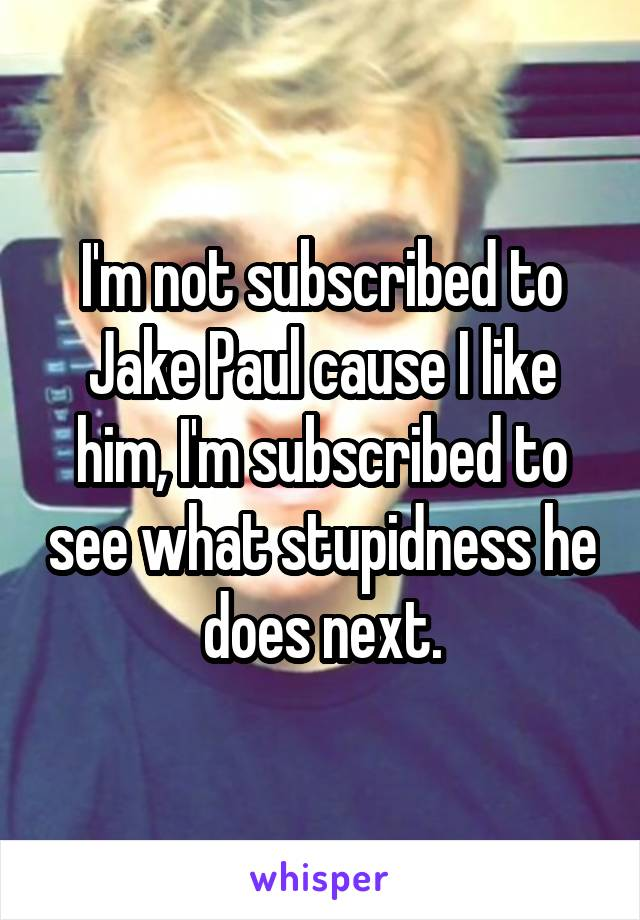 I'm not subscribed to Jake Paul cause I like him, I'm subscribed to see what stupidness he does next.