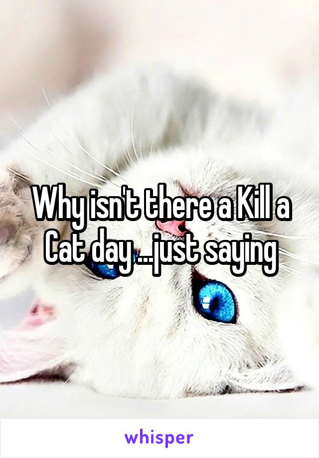 Why isn't there a Kill a Cat day ...just saying