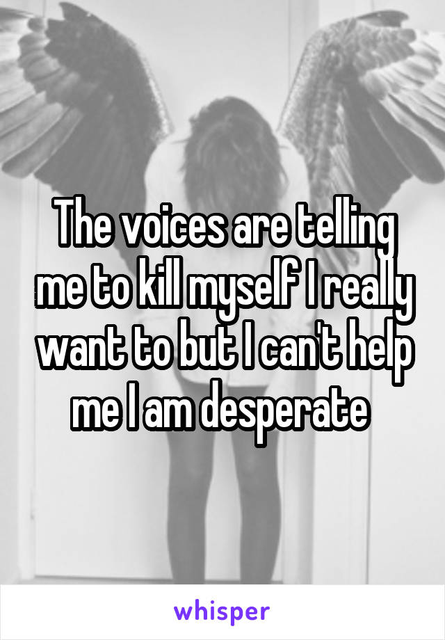 The voices are telling me to kill myself I really want to but I can't help me I am desperate