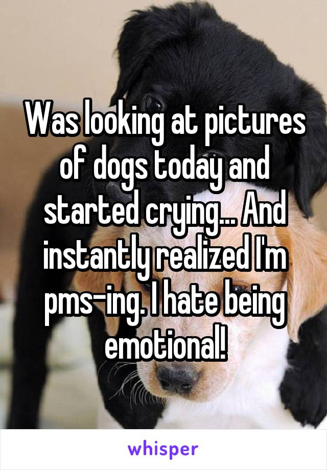 Was looking at pictures of dogs today and started crying... And instantly realized I'm pms-ing. I hate being emotional!