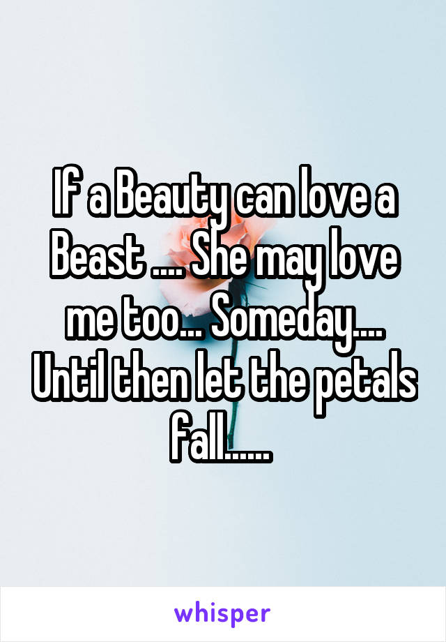 If a Beauty can love a Beast .... She may love me too... Someday.... Until then let the petals fall......