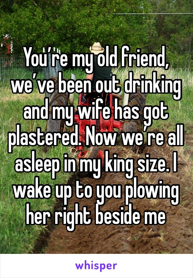 You're my old friend, we've been out drinking and my wife has got plastered. Now we're all asleep in my king size. I wake up to you plowing her right beside me