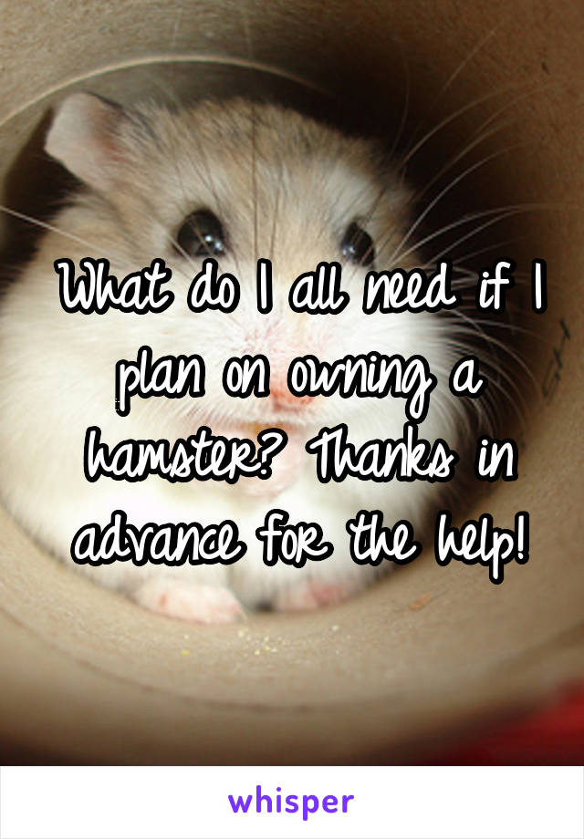 What do I all need if I plan on owning a hamster? Thanks in advance for the help!