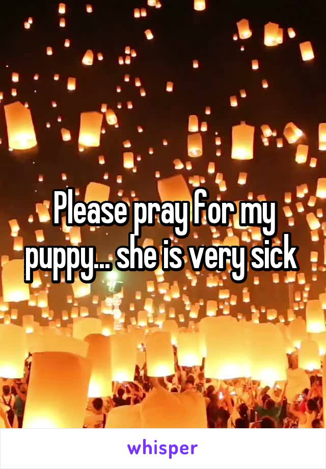 Please pray for my puppy... she is very sick