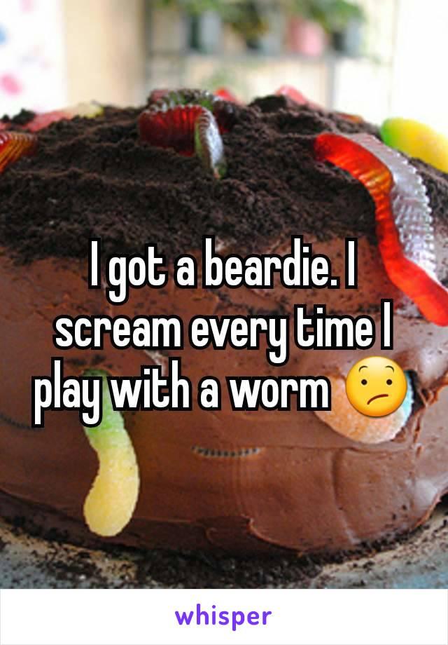 I got a beardie. I scream every time I play with a worm 😕