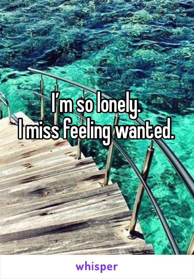 I'm so lonely. I miss feeling wanted.