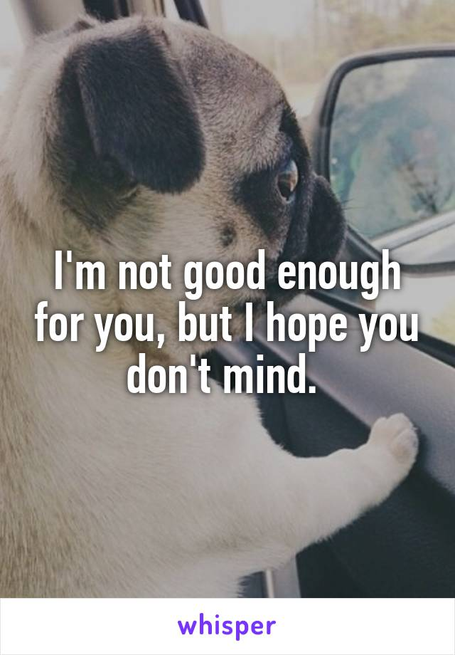 I'm not good enough for you, but I hope you don't mind.